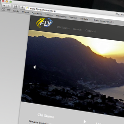 Fly multiservices website